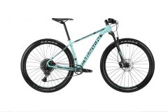 Bianchi Grizzly 9.1