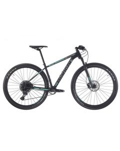 Bianchi Grizzly 9.2